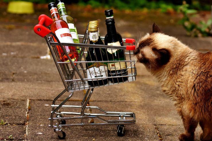 Иностранцы смогут возвращать налоги при покупке российского алкоголя