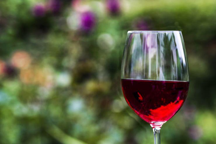 Грузия вернулась влидеры экспортеров вина вРФ