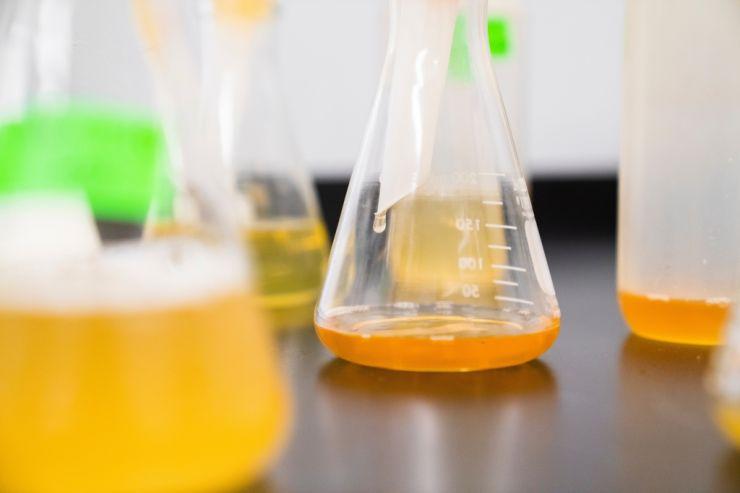 На форуме «Технопром» в Новосибирске представили генетический анализ пива и блокчейн для бутылок