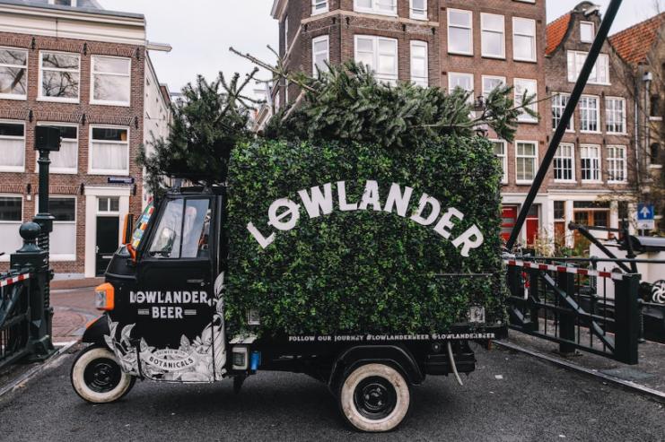 Голландские пивовары сварили пиво из рождественских елей