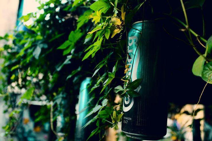 Carlsberg: темпы роста безалкогольного пива значительно опережают рынок